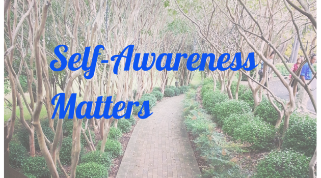 Thoughts on Self-Awareness